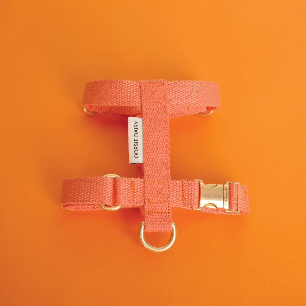 [웁시데이지]HARD HARNESS_ORANGE